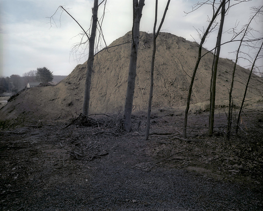 Mound-and-trees-1.jpg